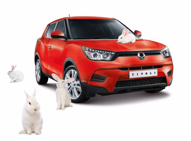 SSANGYONG'S EASTER BUNNY BOUNCES IN WITH SPECIAL SPRING SAVINGS